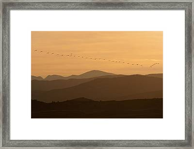 The Formation Framed Print by Monte Stevens
