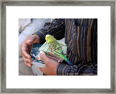 The Fortune Teller Framed Print by Tia Anderson-Esguerra