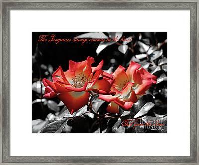 The Fragrance Always Remains Framed Print by Karen Lewis