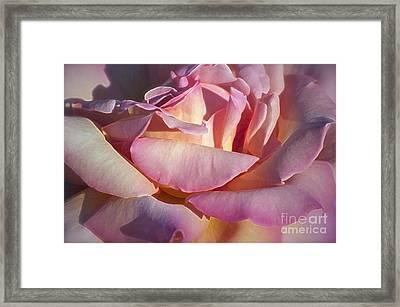 The Fragrance Framed Print by Gwyn Newcombe
