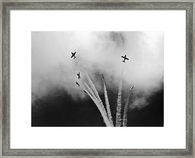 Framed Print featuring the photograph The Freedom Of The Sky by Nick Mares