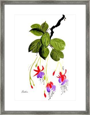 The Fuschia Framed Print by Alethea McKee