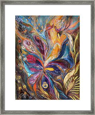 The Galilee Iris Framed Print by Elena Kotliarker