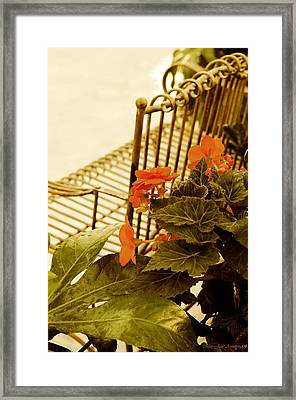 The Garden Bench Framed Print by MaryJane Armstrong