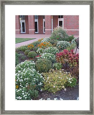 The Garden Framed Print by Tim Campbell
