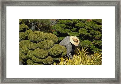 The Gardener Framed Print by Richard Reeve