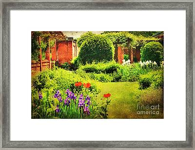 The Gardens Framed Print by Darren Fisher