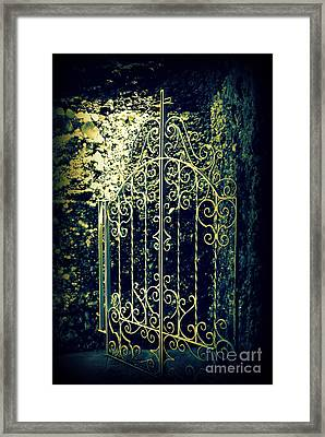 The Gate In The Grotto Of The Redemption Iowa Framed Print by Susanne Van Hulst