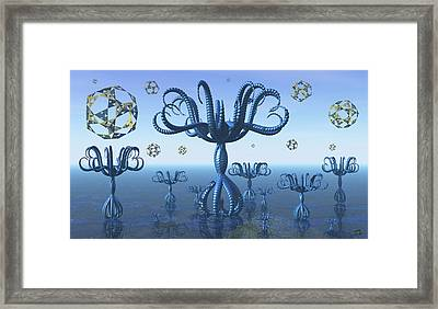 The Geometer's Garden Framed Print by Manny Lorenzo