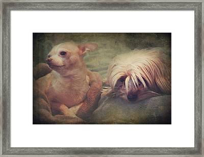 The Girls Framed Print by Laurie Search