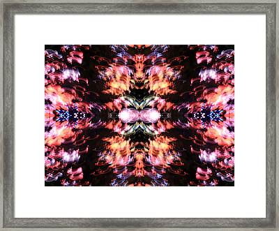 The Goat Framed Print by Danny Lally