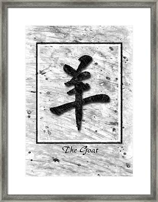 The Goat  Framed Print by Mauro Celotti