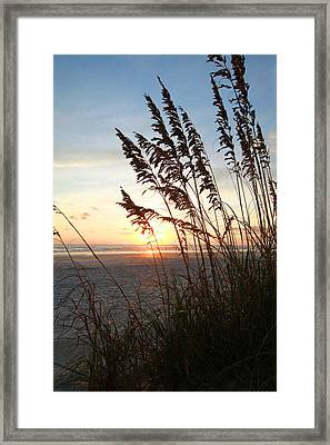 The Golden Hour Framed Print