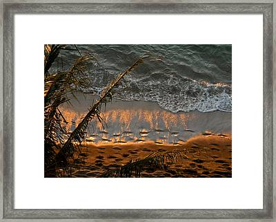 The Golden Moment IIi Framed Print by Kirsten Giving