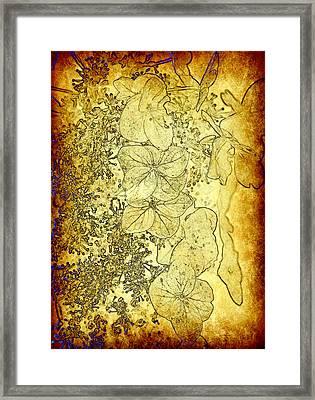The Golden Pedals Framed Print by Taylor Steffen SCOTT