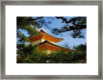 The Golden Temple Framed Print