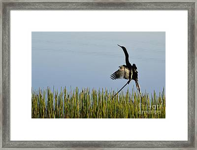 The Good Life Framed Print by Melanie Moraga