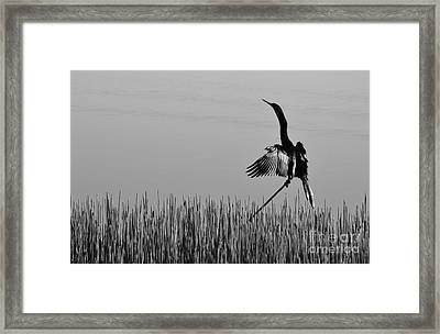 The Good Life Monochrome Framed Print by Melanie Moraga