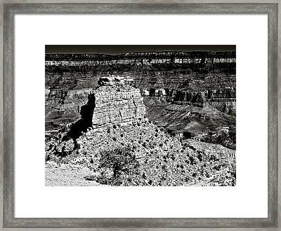 The Grand Canyon Bw Framed Print by Bob and Nadine Johnston