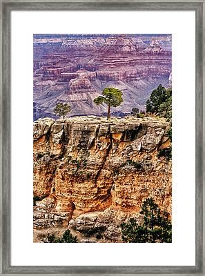 The Grand Canyon Iv Framed Print by Tom Prendergast