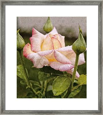 The Grand Trine Framed Print