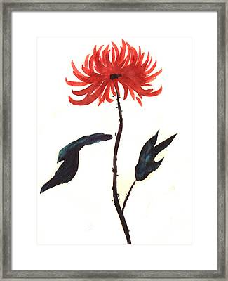 The Great Chrysanthemum Framed Print by Alethea McKee