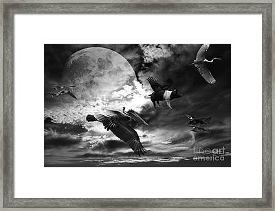 The Great Migration . Black And White Framed Print by Wingsdomain Art and Photography