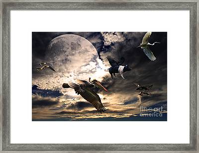 The Great Migration . Full Color Framed Print by Wingsdomain Art and Photography