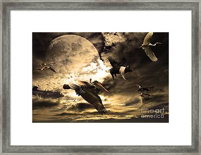The Great Migration Framed Print by Wingsdomain Art and Photography