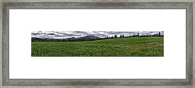 The Green Across Framed Print by Nathaniel Kolby