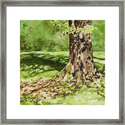The Green Grass Grew All Around Framed Print by Carla Dabney