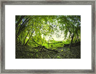 Framed Print featuring the photograph The Green Knoll by Kimberleigh Ladd