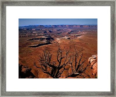 The Green River Over Look Canyonland National Park Framed Print by Daniel Chui