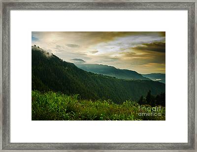 The Green Wall Framed Print by Syed Aqueel