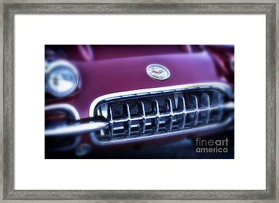 The Grille Framed Print by Tamera James