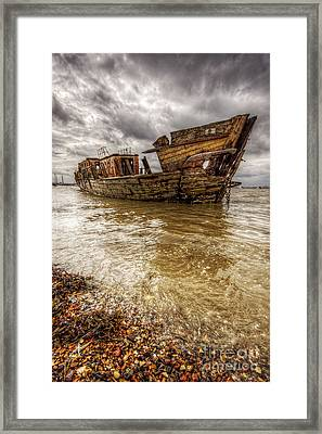 The Gull Framed Print by Lee-Anne Rafferty-Evans