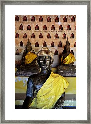 The Hall Of Buddhas I In Colour Framed Print by Dean Harte