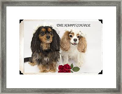 The Happy Couple Framed Print by Daphne Sampson