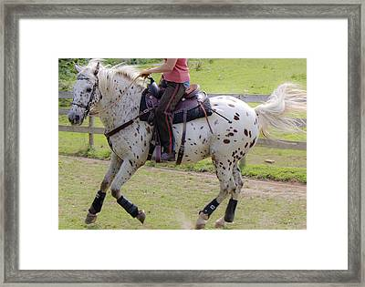 The Happy Dance Framed Print by Betsy Knapp