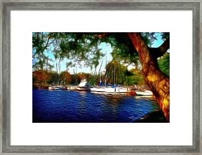 The Harbor Framed Print by Barry Jones