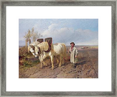 The Harrowing Team Framed Print by John Frederick Herring Snr