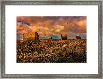The Hayfield Framed Print by Chris Lord