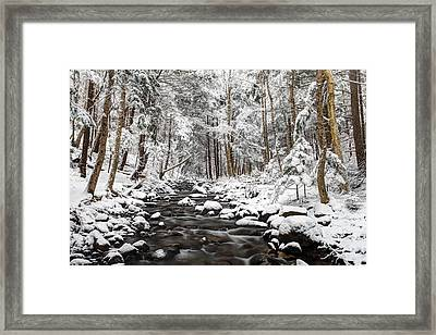 Into The Heart Of Winter Framed Print by Scott Leslie