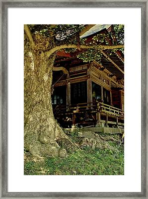 Framed Print featuring the photograph The Hidden Shrine 2 by Tim Ernst