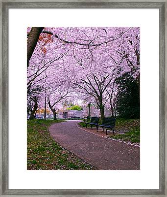 The Hope Framed Print by Mitch Cat