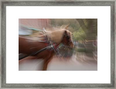 The Horse Framed Print by Randy J Heath