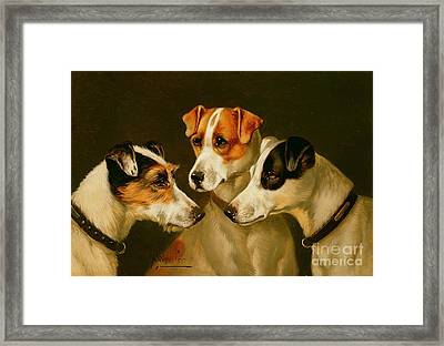 The Hounds Framed Print by Alfred Wheeler