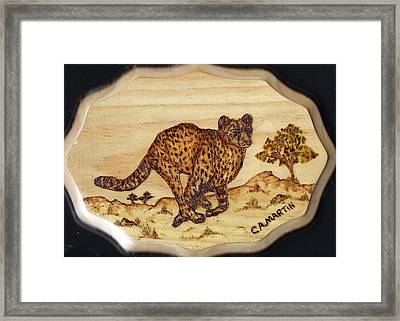 The Hunt Of The Cheetah Framed Print by Clarence Butch Martin