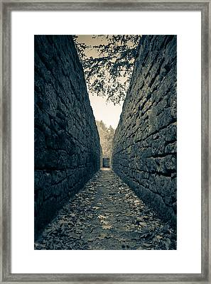 The Hunting System  Framed Print by Andreas Levi