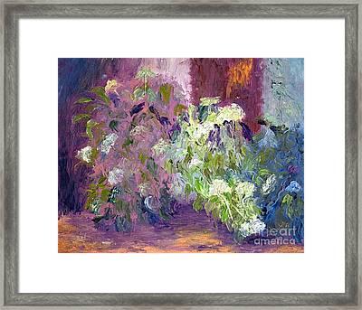 The Hydrangeas Framed Print by Patricia Huff